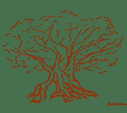 Olivo Oleomile